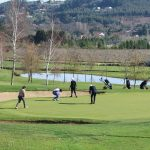 nacex golf